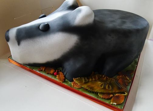 Baby Badger Fall Inspired Cake